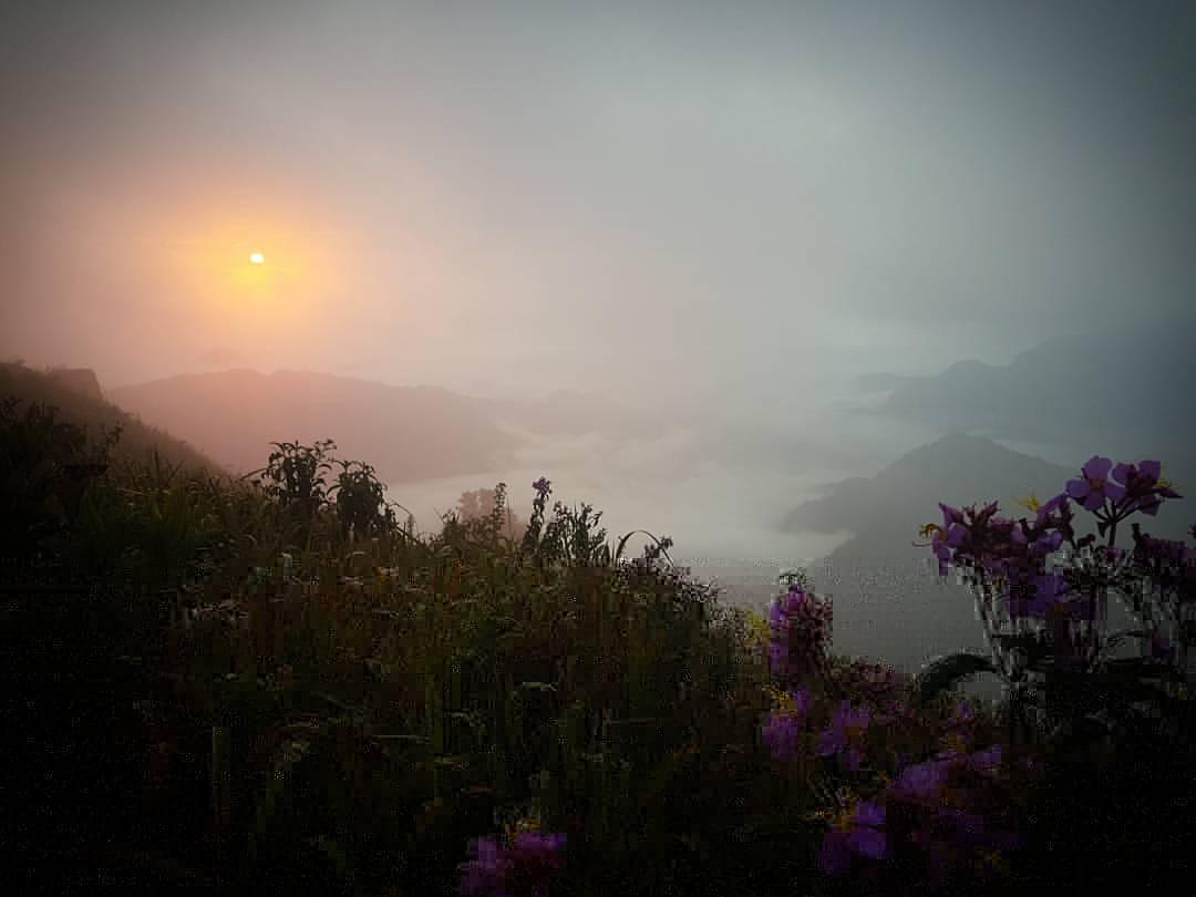 เชียงราย ม่วนใจ๋ ภูชี้ฟ้า 3 วัน 2 คืน