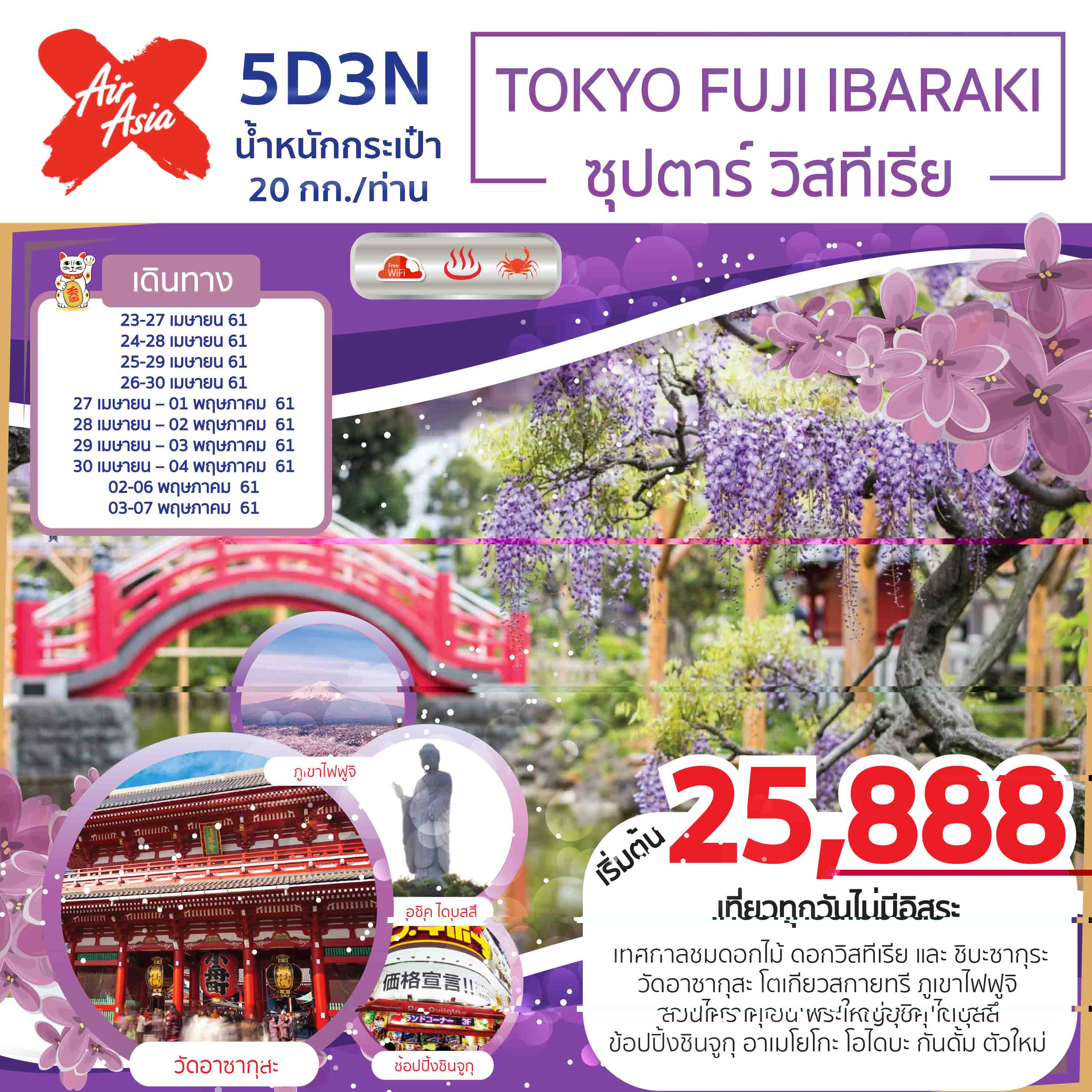 TOKYO FUJI IBARAKI 5D3N (ซุปตาร์ วิสทีเรีย)