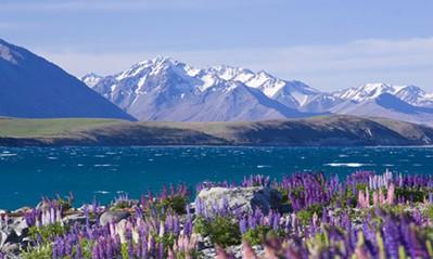 นิวซีแลนด์ เกาะใต้ (SOUTH ISLAND) 6D 4N